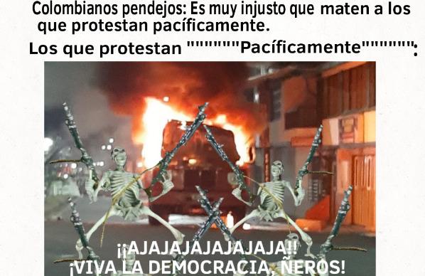 ¡Viva la democracia, ñero, carechimbo! - meme
