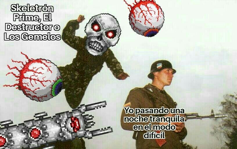 Terraria - meme