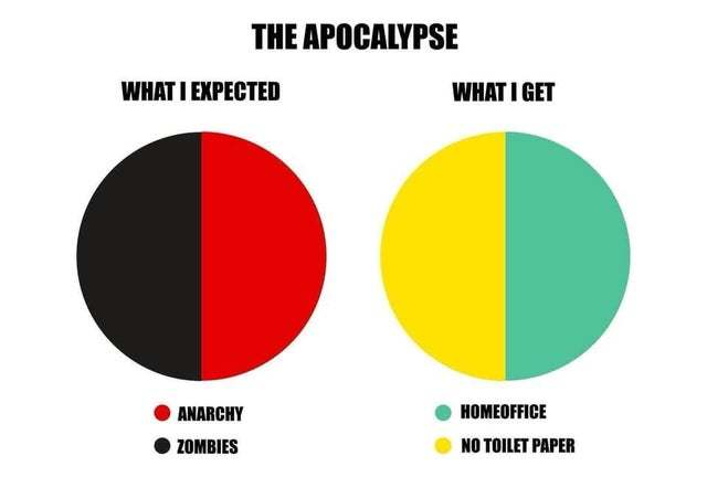 Apocalypse: what I expected vs what I got - meme