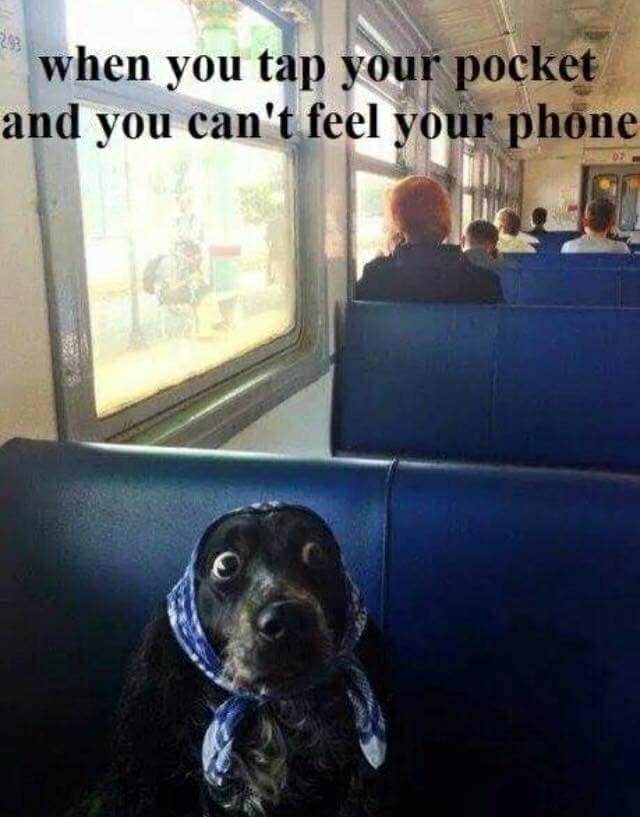 Phone Addict be like - meme