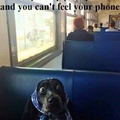 Phone Addict be like