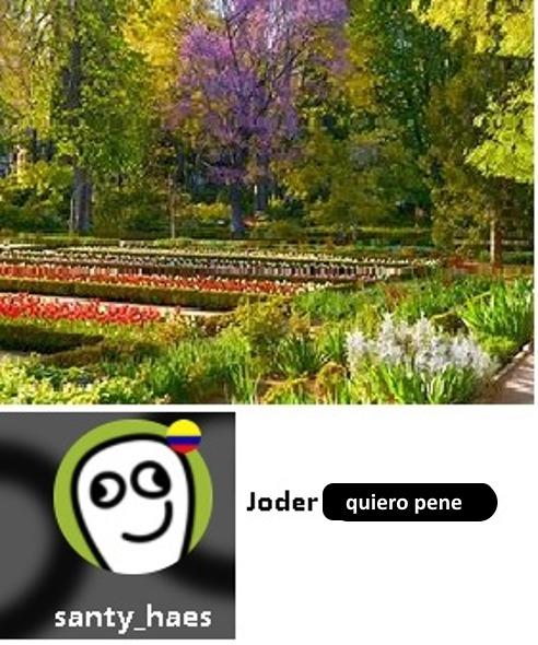 santy_haes deja de banearme maldito traumado - meme