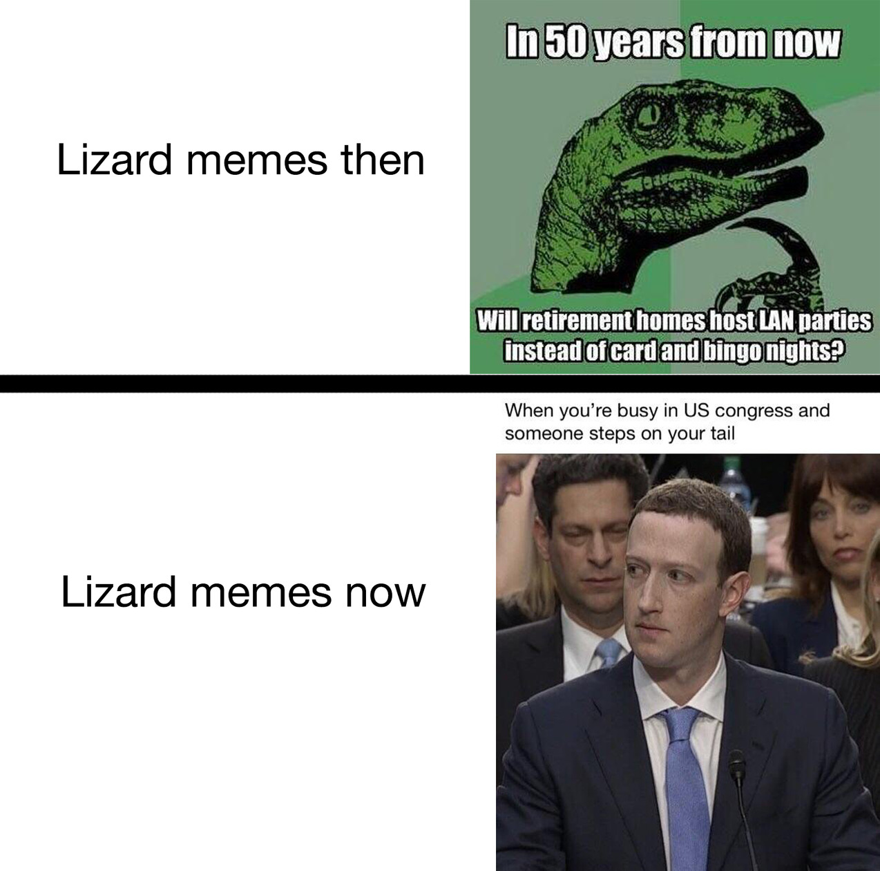 Government is lizards, Alex jones is god - meme