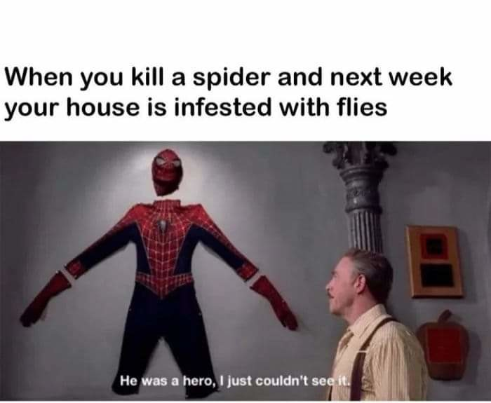 I need me some pictures of Spiderman - meme