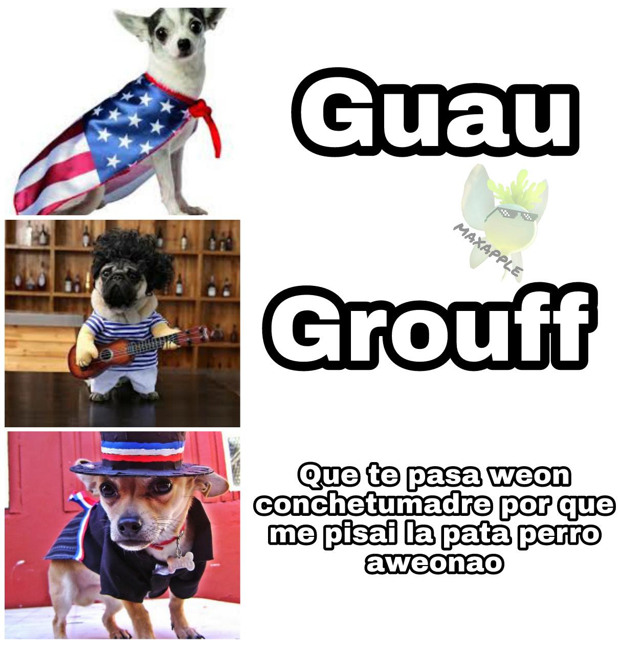 El perro weon. Idea Ferdrawins - meme