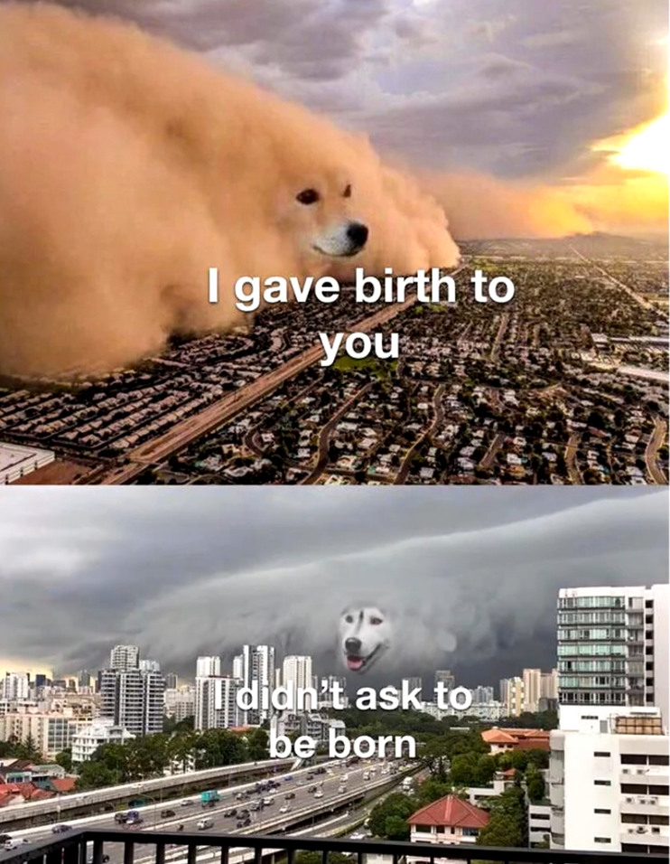 I didn't ask to be born - meme