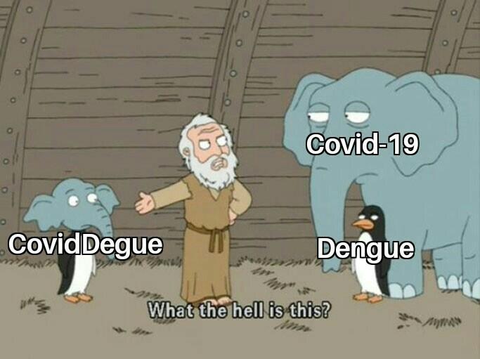 Fusion Del Covid y el Dengue - meme