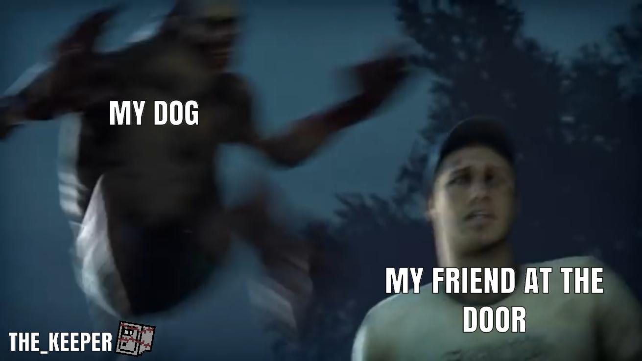 """GET YOUR FUCKING DOG, BITCH"" - meme"