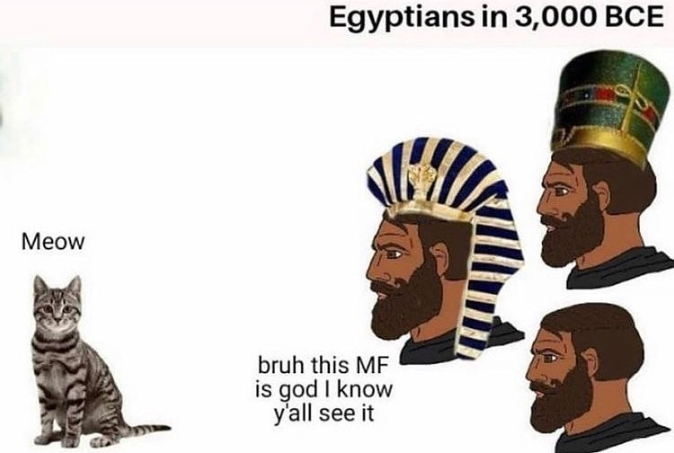 meow nigga - meme