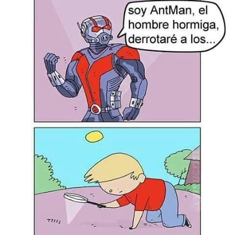 Deja de joder insecto - meme