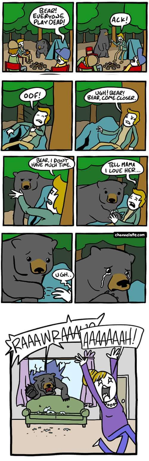 Good job bear - meme