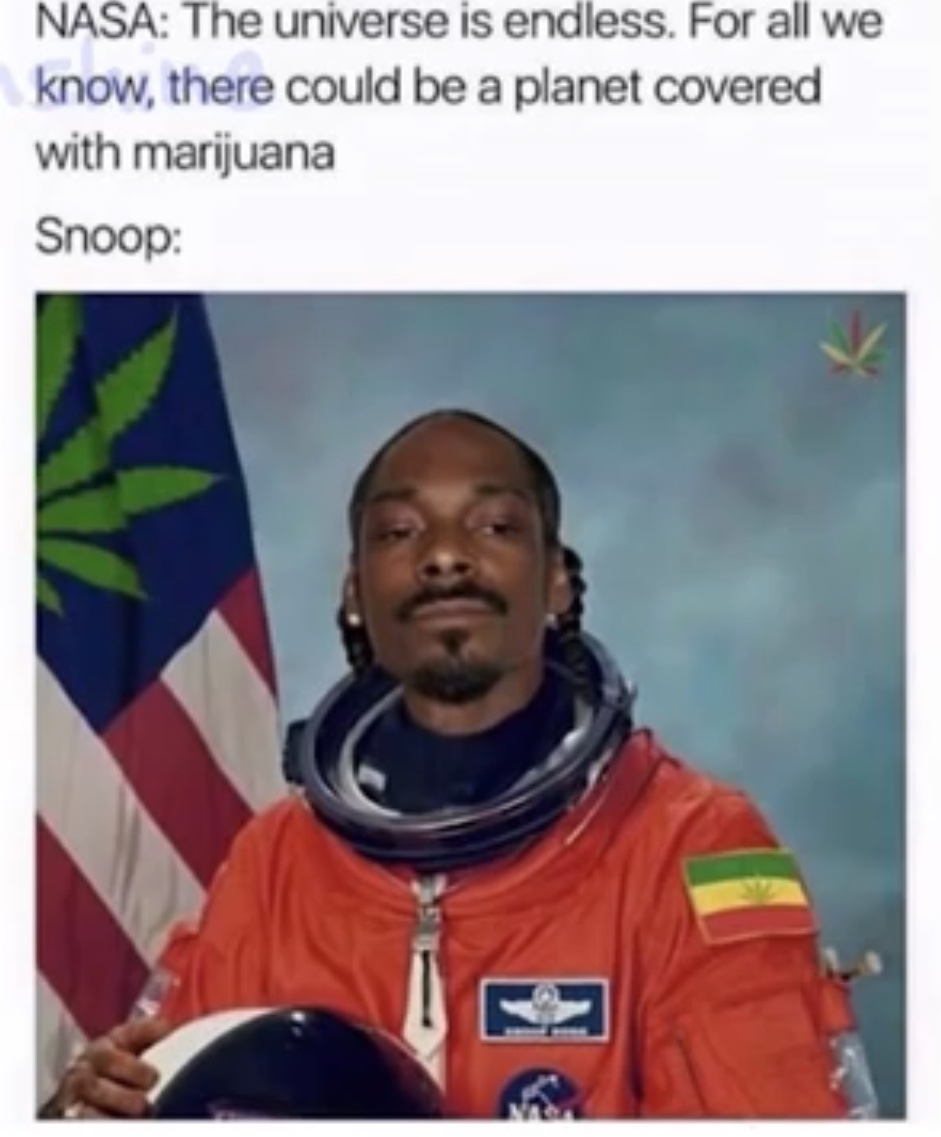 Snoop the astronaut - meme