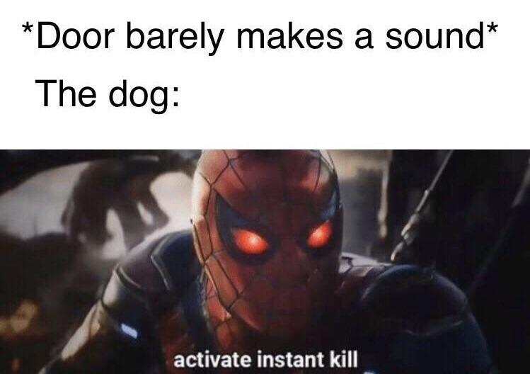 Spidey kill - meme