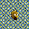 Parece q se mueve (es una ilusión óptica)