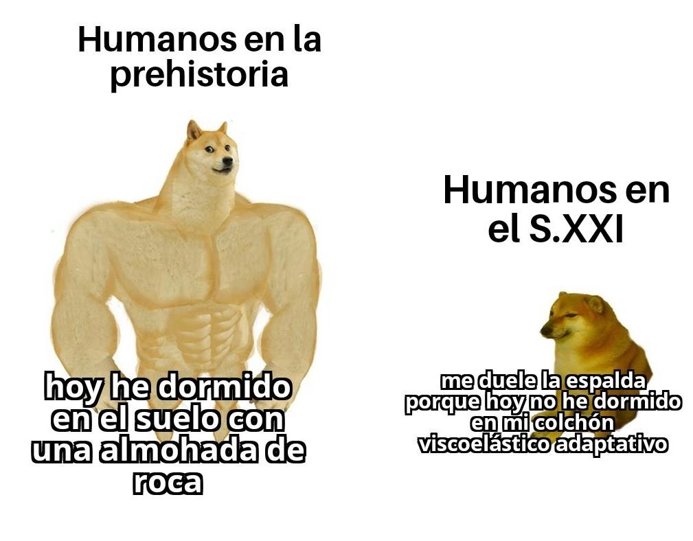 Los humanos se quejan por todo - meme