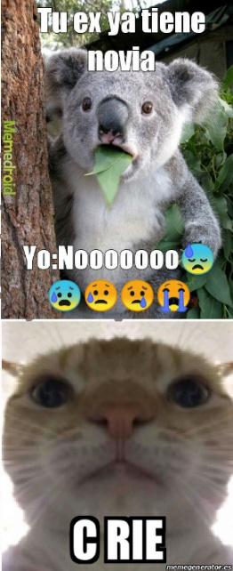 Estaba en moderación y me encontré este meme. *C rie tan fuerte que sus organos se salen*