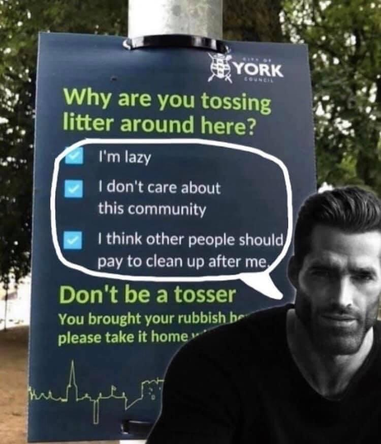 Why aren't you tossing litter around? - meme