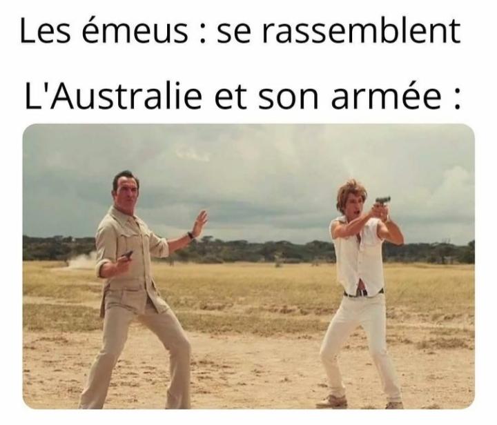 Australia logic - meme