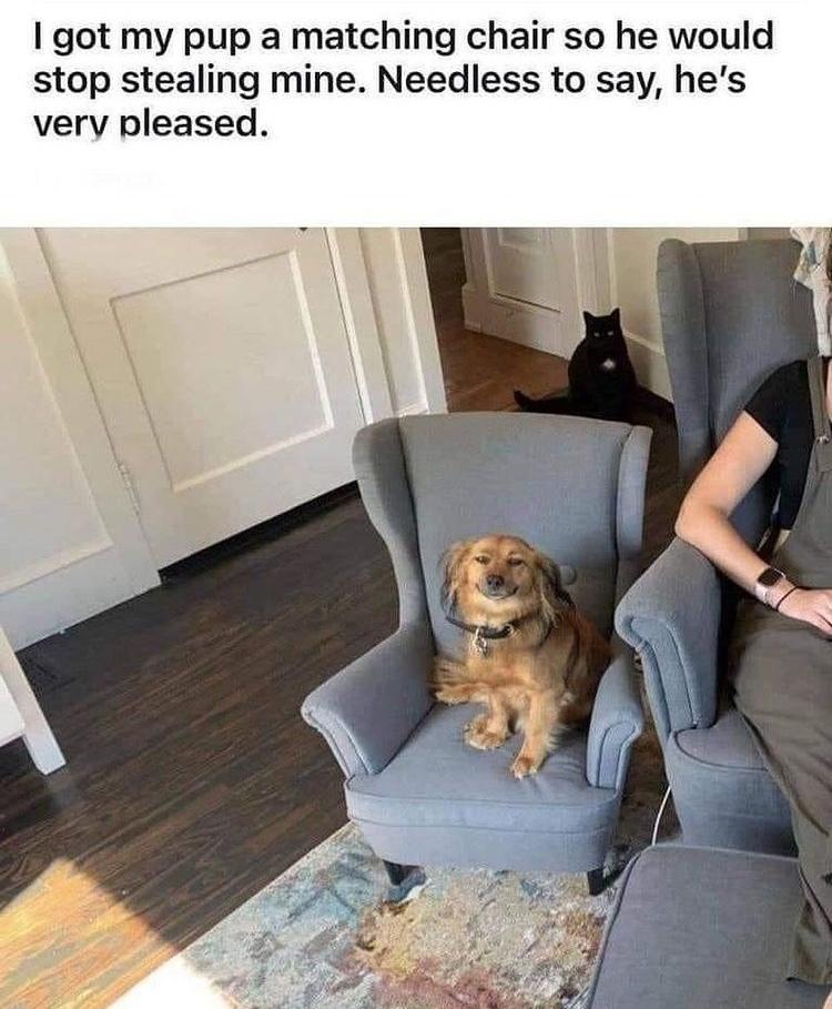 tiny chair - meme