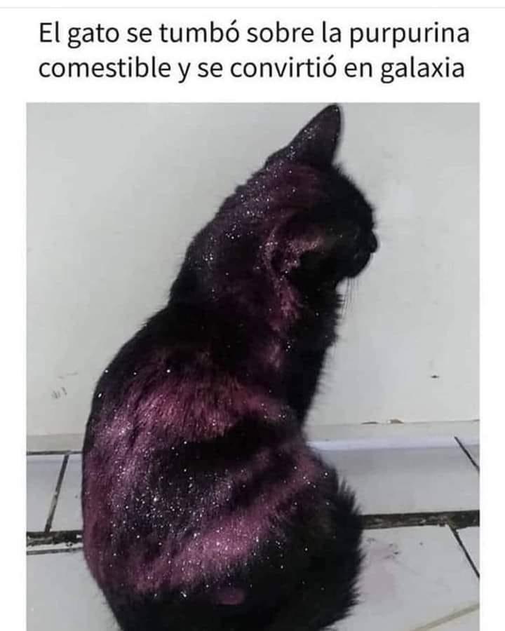 Galaxia - meme