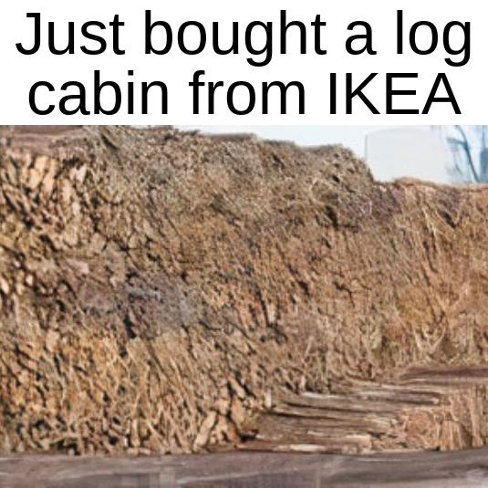 cabin - meme