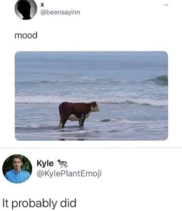 mood - meme