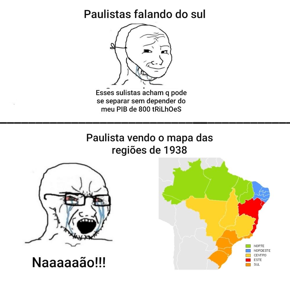 não sou sulista, só odeio paulista - meme