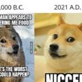 Based dog
