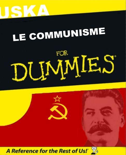 Le communisme pour les NULS - meme