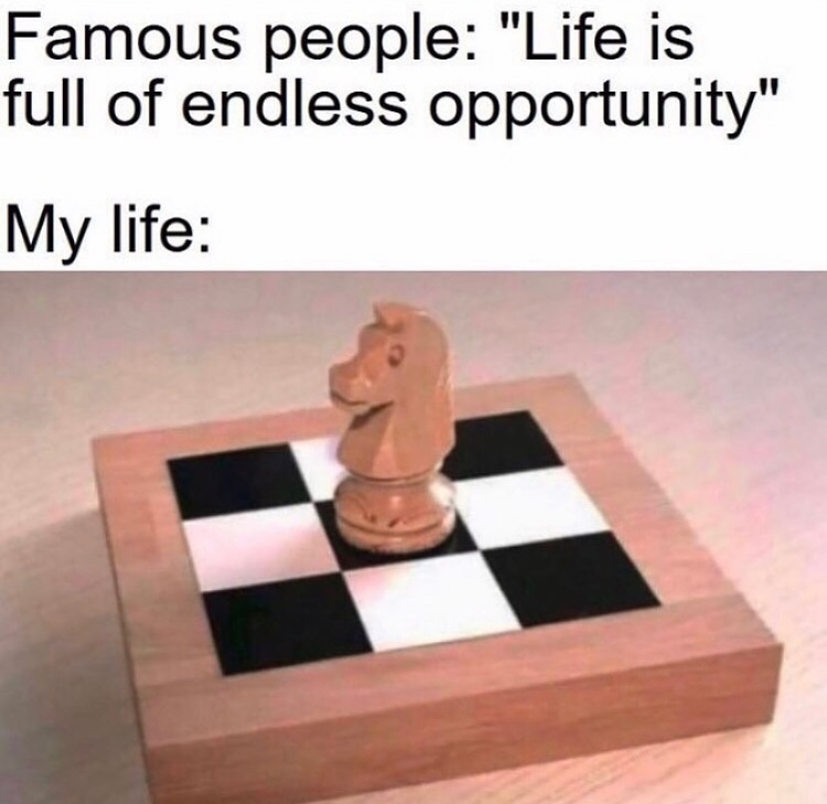life is a chess board and I'm playing monopoly - meme