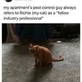 best man on the job