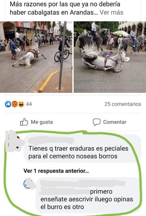 Meme: Dice Que El Burro Es Otro