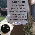 attention au chien !
