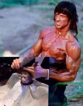 Rambo estilista :3 - meme