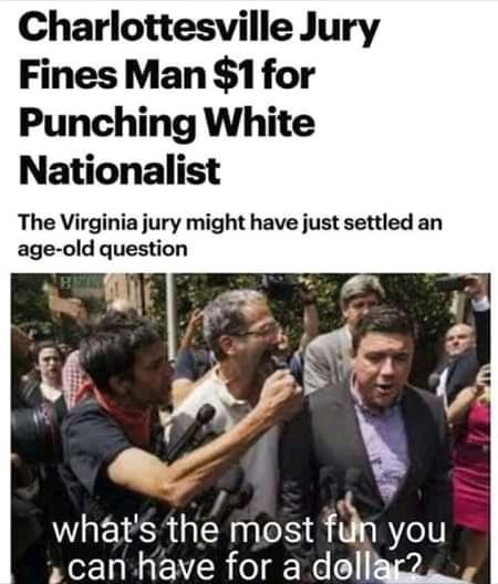 I punched a nazi - meme