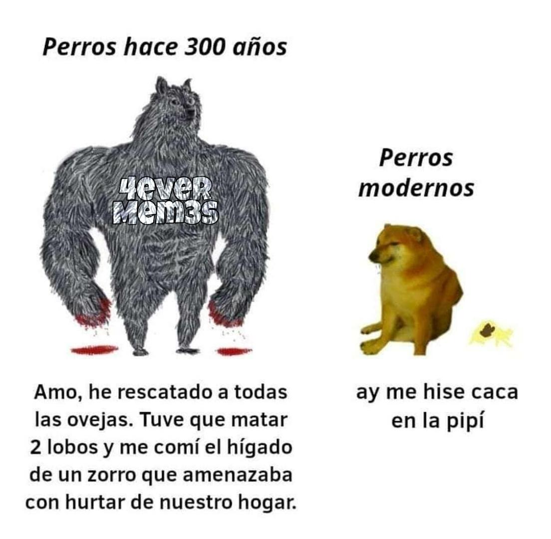 Lucho be like - meme