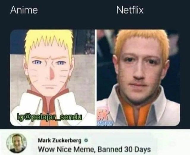 Naruto is a lizard to netflix - meme