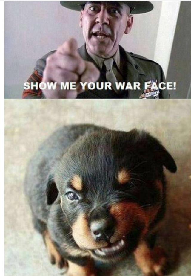 Mean Face - meme