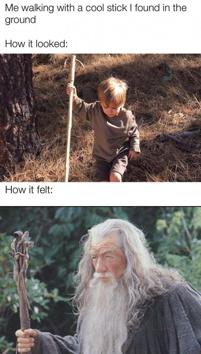 Me walking with a cool stick I found in the ground - meme