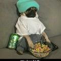Pug life love puggies