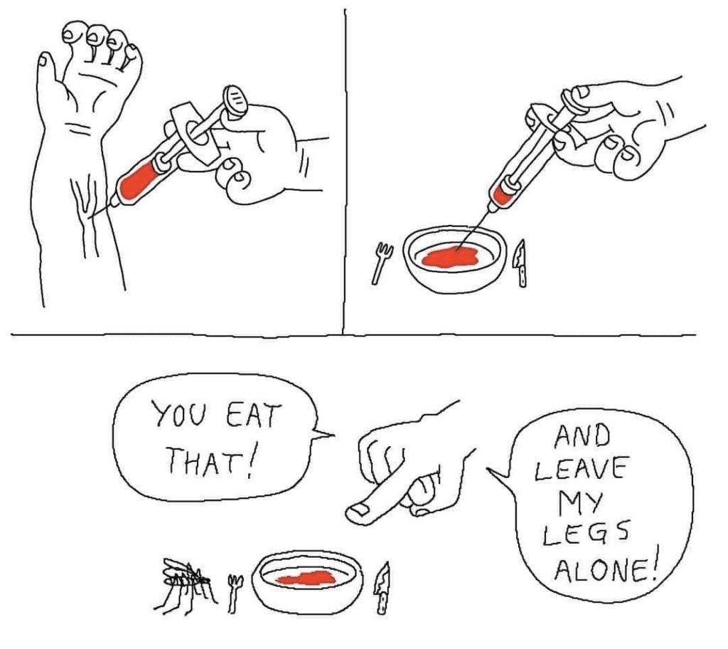 Damn Mosquitoes - meme