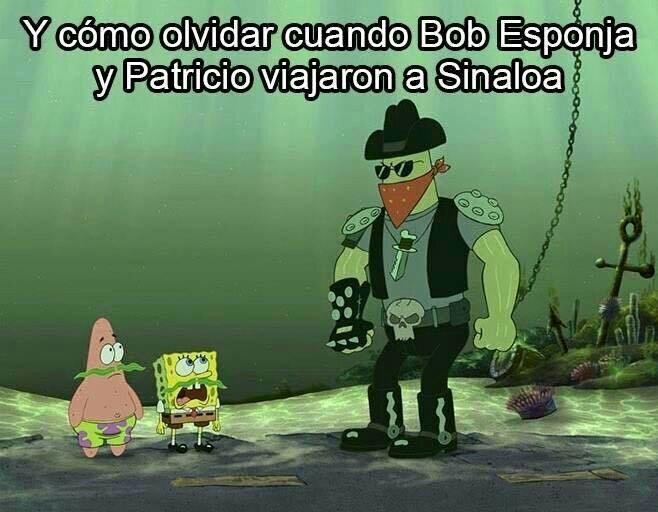Bob estronja - meme