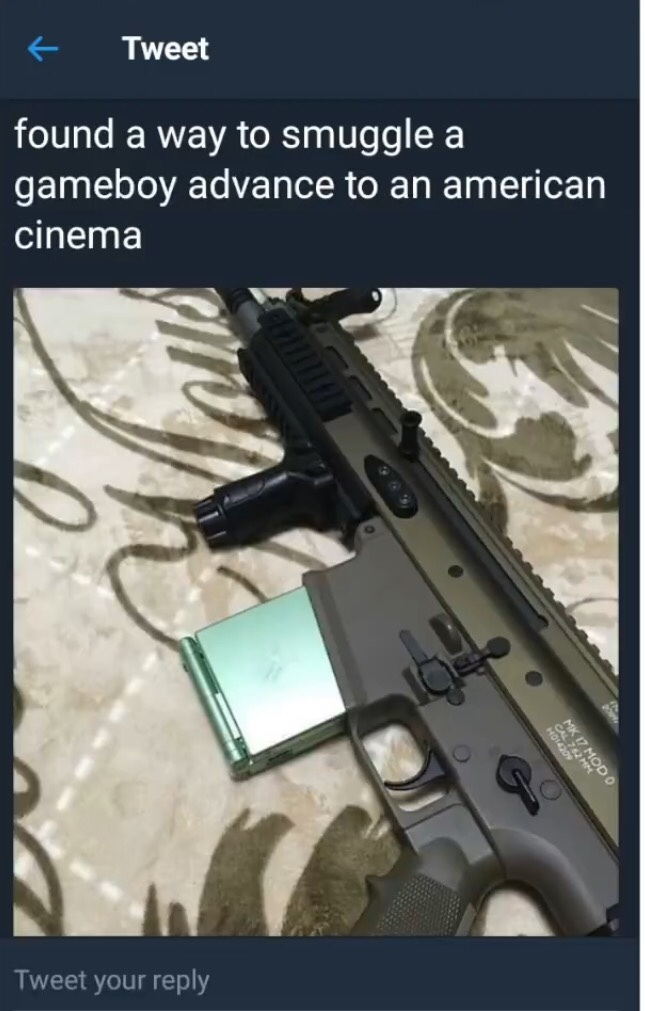 """""""No guns"""" signs as if someone who is going to shoot up the theater will turn around after seeing the damn sign. - meme"""