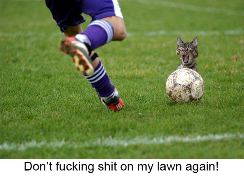 Dont Shit On My Lawn - meme