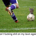 Dont Shit On My Lawn