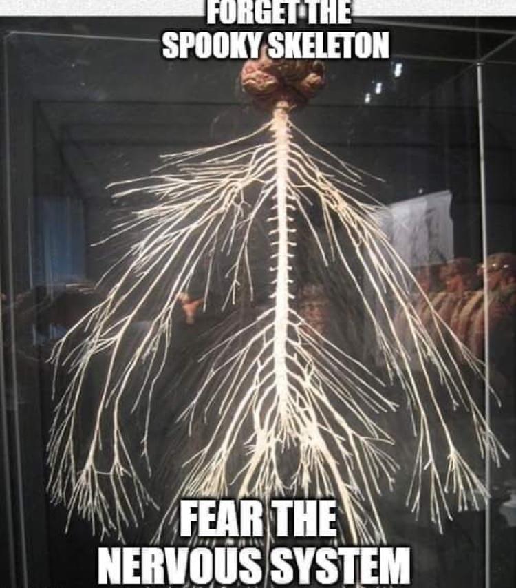 it's making me nervous - meme