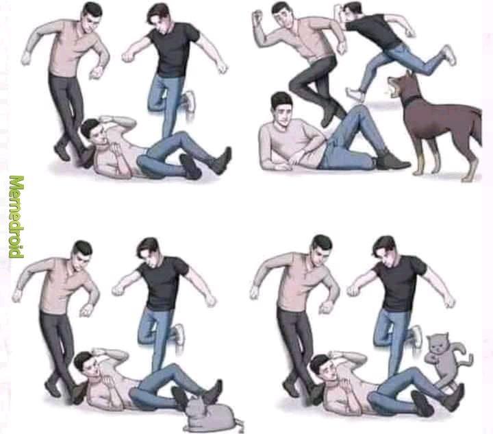 Fucking cats. - meme