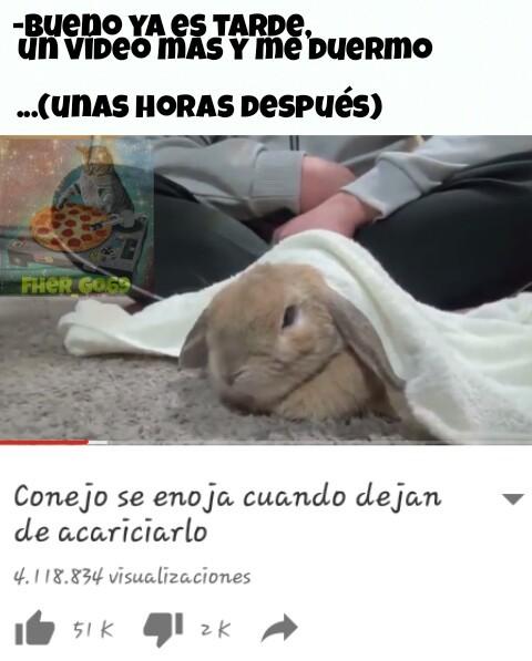 Este conejo ( ͡° ͜ʖ ͡°) - meme