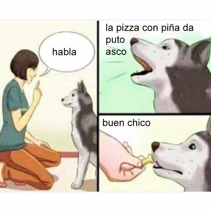 Buen perro - meme