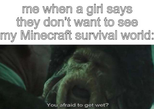 Me when a girl says they don't want to se my Minecraft survival world - meme